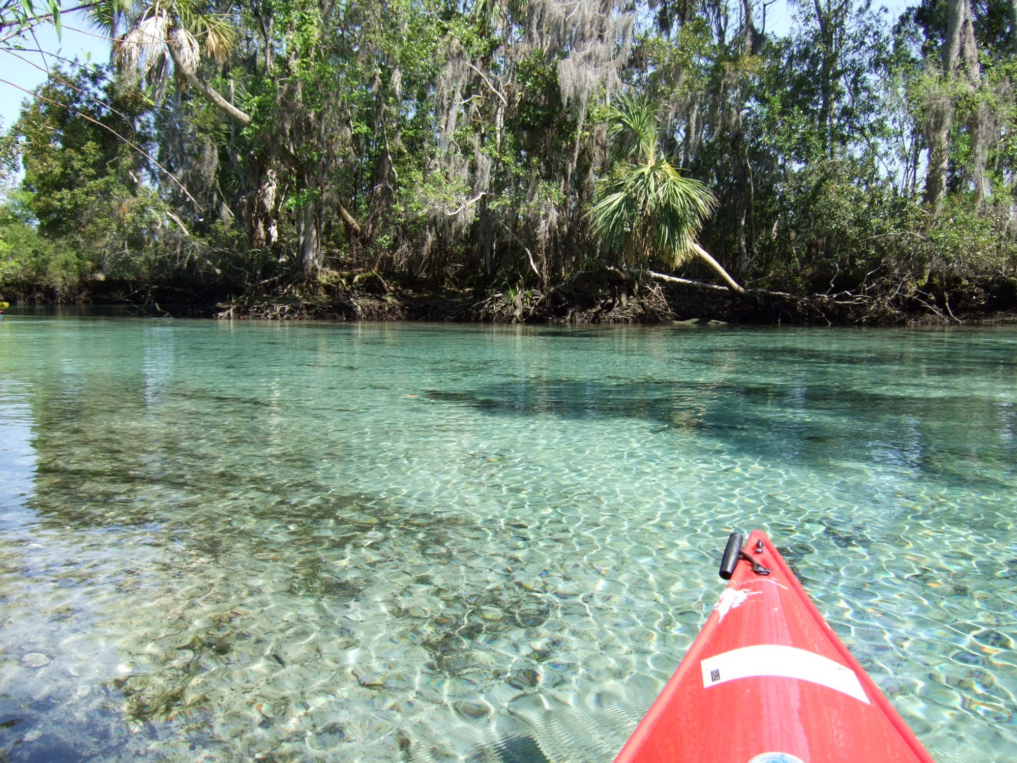 Kayaking in Florida